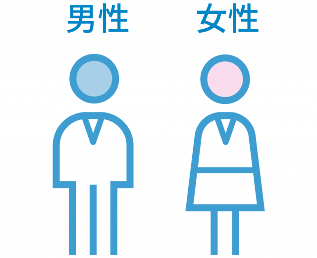 社員の男女比率